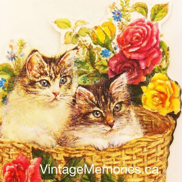 Designer greeting cards for cat lovers